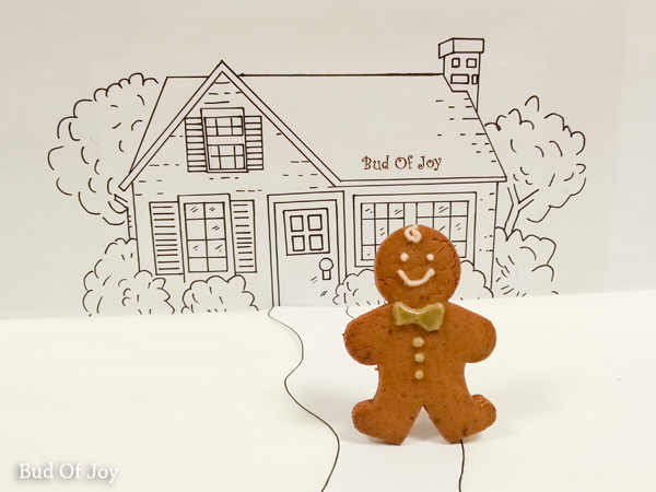 Mr Organic Gingerbread Man (a.k.a. Mr OGM) runs out of the oven!