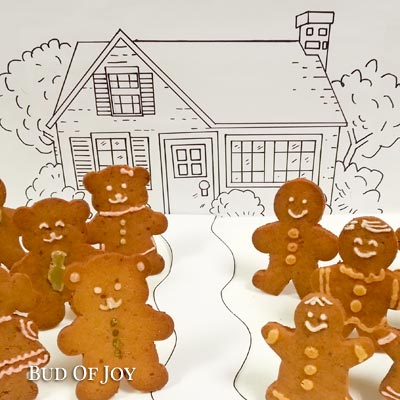 Adult-Child Workshop: Organic Gingerbread and Decor