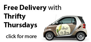 Islandwide Delivery