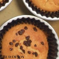 Organic Chocolate Chip Cupcake (Creamless)