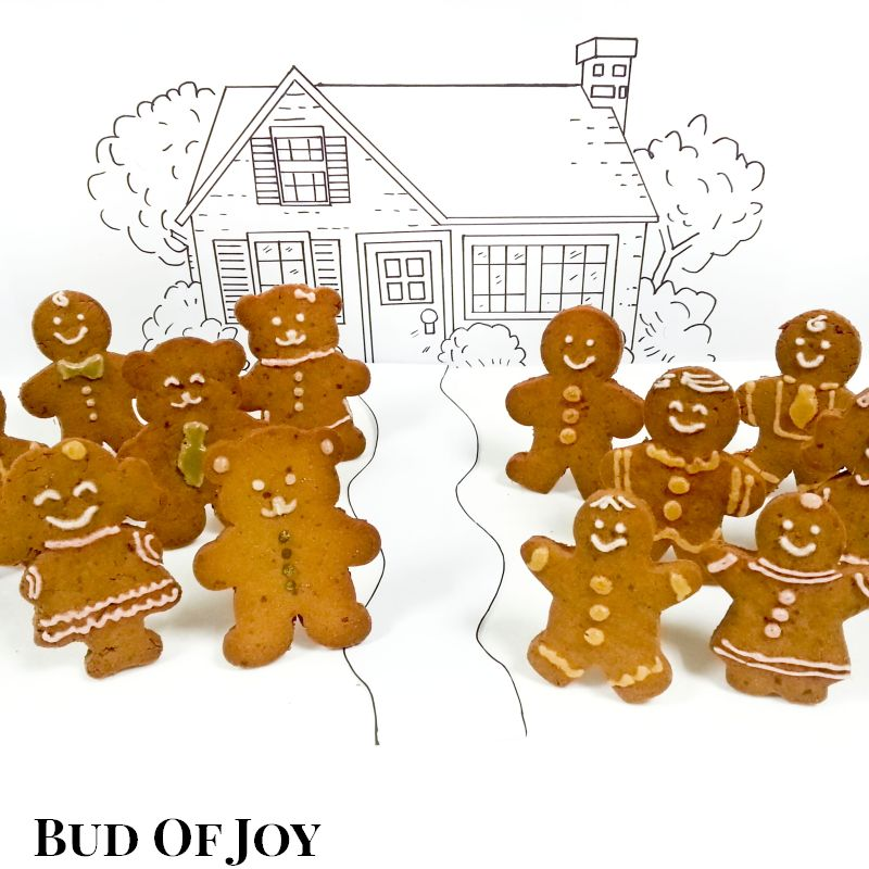 Organic Gingerbread Gathering (12 pcs)