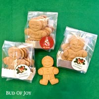 Organic Gingerbread Man Bundle of 12 (No Icing)
