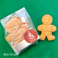 Organic Gingerbread Man Pack of 4 (No Icing)