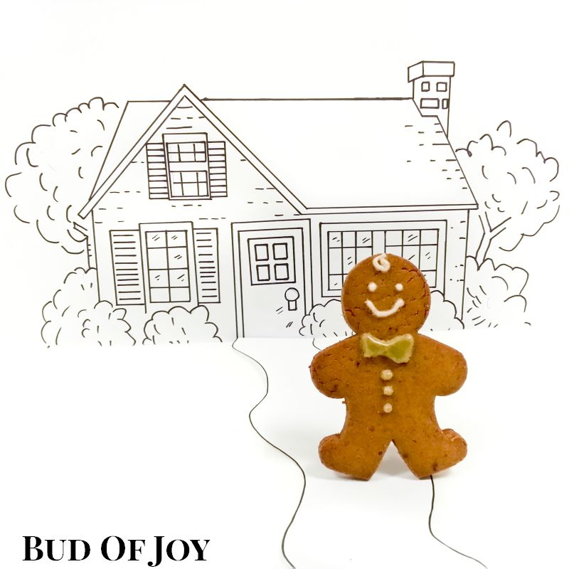 Organic Gingerbread Man