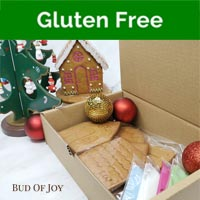 DIY Organic GLUTEN-FREE Vegan Gingerbread House (U.P. $50)