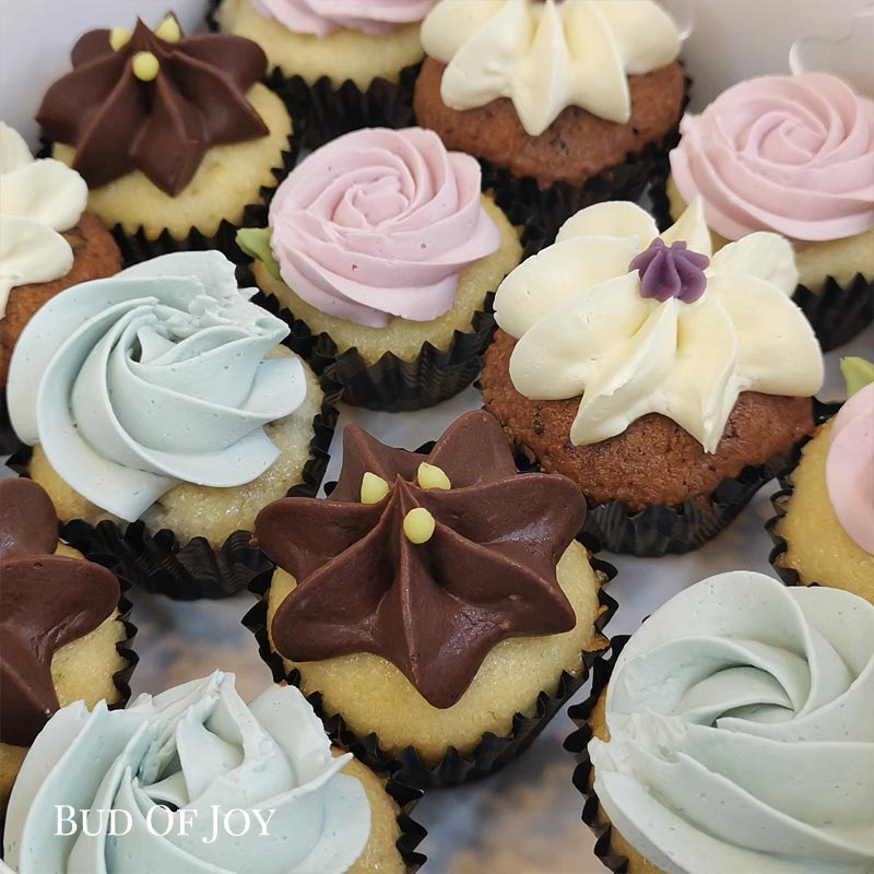 Organic Mini Creamed Cupcakes (32 mini cupcakes packed snugly in 2 boxes)