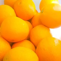 Organic Oranges - Big (4pcs)