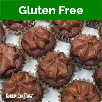 Organic Gluten-Free Vegan Chocolate Cupcakes (32 mini cupcakes packed snugly in 2 boxes)